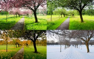 the-four-seasons1-300×191